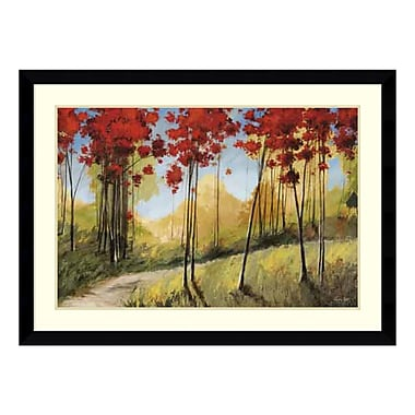 Amanti Art Framed Art Print 'Forest Trail' by Thomas Andrew, 45