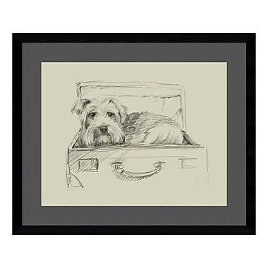 Amanti Art – Imprimé encadré « Stowaway I (Dog) » par Ethan Harper, 23 x 19 po (DSW3909199)