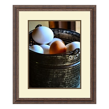 Amanti Art Framed Art Print 'One in the Bunch (Eggs)' by Matt Marten, 22