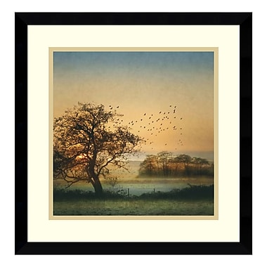 Amanti Art Framed Art Print 'Good By Day Birds' by William Vanscoy, 17