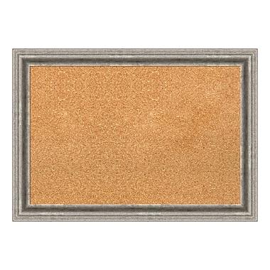 Amanti Art – Tableau en liège encadré, moyen, argenté Bel Volto, 27 x 19 po (DSW1418338)