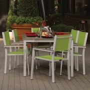 Latitude Run Farmington 7 Piece Powder Coated Aluminum Frame Dining Set; Vintage Tekwood
