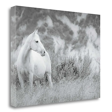 Tangletown Fine Art 'Misty Mare' Photographic Print on Canvas; 20'' H x 26'' W