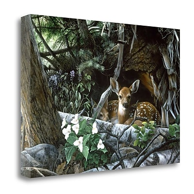 Tangletown Fine Art 'Undercover' Photographic Print on Wrapped Canvas; 26'' H x 38'' W