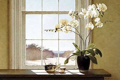 East Urban Home Orchids In The Window II Photographic Print on Wrapped Canvas