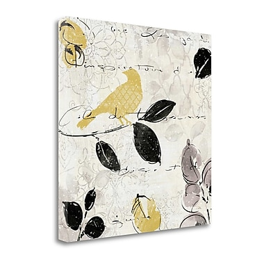 Tangletown Fine Art 'Plume and Motif I' Graphic Art Print on Canvas; 35'' H x 35'' W