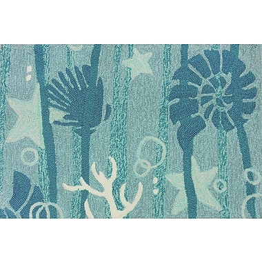 Highland Dunes Coeymans Hand Hooked Turquoise/White Indoor/Outdoor Area Rug
