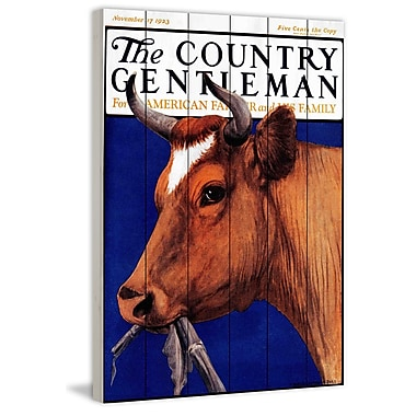 Marmont Hill 'CG Cow Brown' Painting Print on White Wood; 18'' H x 12'' W