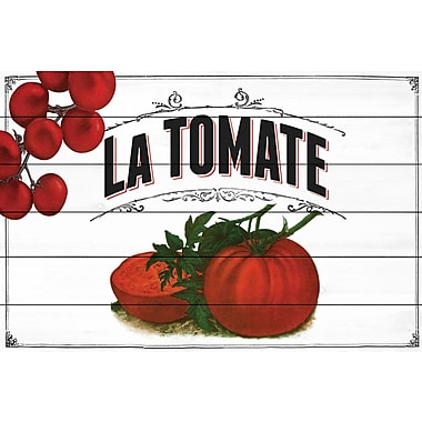 Marmont Hill 'French Produce Tomato' Painting Print on White Wood; 16'' H x 24'' W