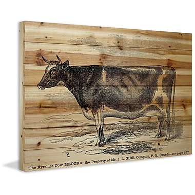 Marmont Hill 'Ayrshire Cow' Painting Print on Natural Pine Wood; 16'' H x 24'' W