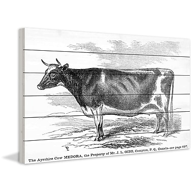 Marmont Hill 'Ayrshire Cow' Painting Print on White Wood; 12'' H x 18'' W