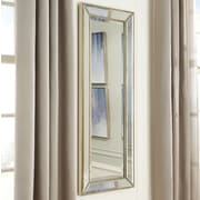 Willa Arlo Interiors Delany Traditional Silver/Black Wall Mirror