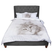 East Urban Home Monika Strigel Main Coon Kitten Cat Comforter; Twin