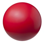 champion sports highdensity coated foam ball red 8 12