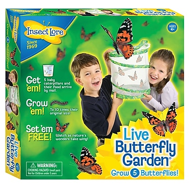 Insect Lore® Live Butterfly Garden