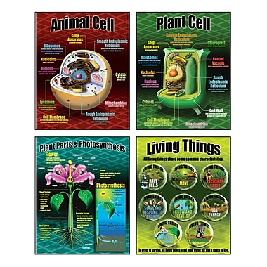 McDonald Publishing® Poster Set, Life Science Teaching
