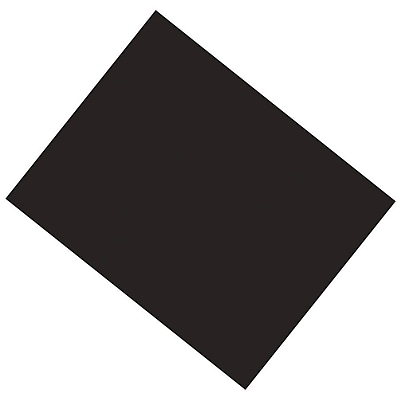 Pacon® Poster Board, 22 x 28
