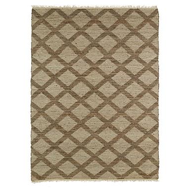 Highland Dunes Coatsburg Grey/Chocolate Area Rug; 5' x 7'9''