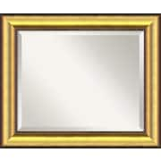 Willa Arlo Interiors Burnished Wood Wall Mirror; Large