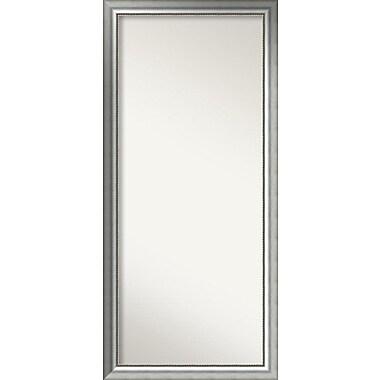 Willa Arlo Interiors Burnished Silver Wood Wall Mirror; 64.75'' H x 29.75'' W x 1.5'' D