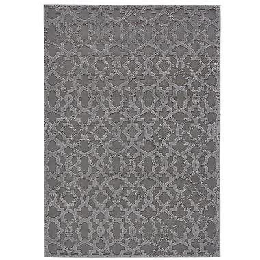 Willa Arlo Interiors Chevalier Silver Area Rug; 10' x 13'2''