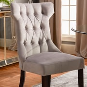 Willa Arlo Interiors Caravilla Side Chair (Set of 2); Taupe