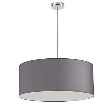 Dainolite – Luminaire de 24 po de diamètre, 1 ampoule, 14,5 x 24 x 24 po, argent (DRM-M-834)