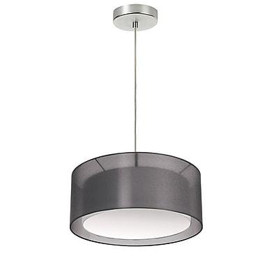 Dainolite – Luminaire suspendu à 2 ampoules, 17 po de diamètre, 6,5 x 17 x 17 (po), noir (MEL-17CLR-BK)