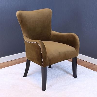 Willa Arlo Interiors Kaat Velvet Wing back Chair; Brown Sugar