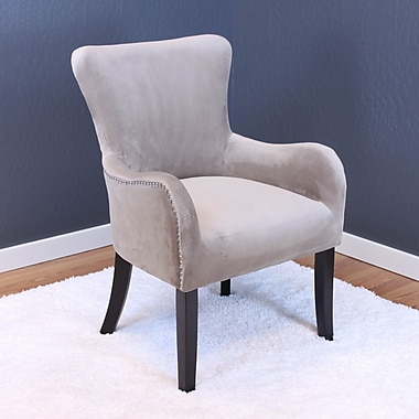 Willa Arlo Interiors Kaat Velvet Wing back Chair; Taupe