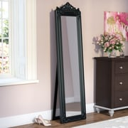 Willa Arlo Interiors Crown Rectangle Standing Wall Mirror; Black