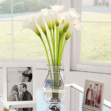 Willa Arlo Interiors Silk Calla Lily in Vase; Cream