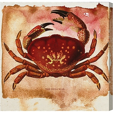 Breakwater Bay 'The Red Crab' Painting Print on Canvas; 12'' H x 12'' W x 1.5'' D