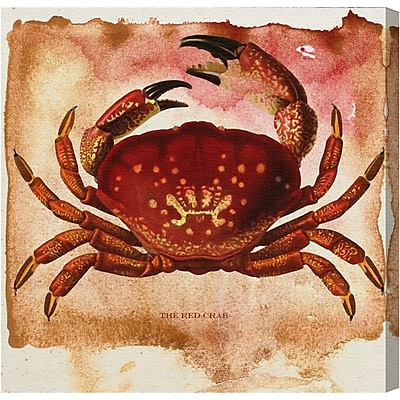 Breakwater Bay 'The Red Crab' Painting Print on Canvas; 43'' H x 43'' W x 1.5'' D