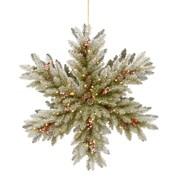 Gracie Oaks Double Sided 32'' Snowflake/Fir Wreath