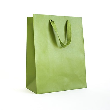 Creative Bag – Sac fourre-tout Manhattan, 5 x 4 x 6 po, vert Gramercy, 25/paquet