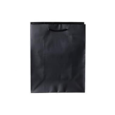 Creative Bag – Sacs mats Euro, 16 x 6 x 12 (po), noir, 100/paquet