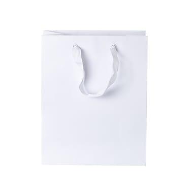 Creative Bag – Sacs Imperial, 8 x 4 x 10 (po), blanc, 100/paquet