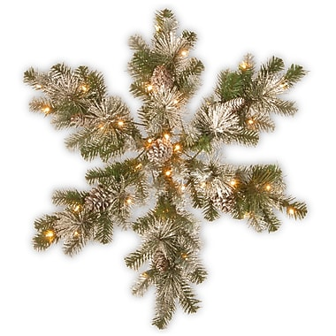 The Holiday Aisle Snow Capped Mountain 32'' Pine Snowflakes Wreath