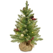 Glittery 2' Green/Champagne Gold Fir Artificial Christmas Tree w/ 15 Warm White Lights w/ Timer