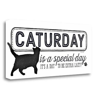 Latitude Run 'Caturday' Graphic Art Print on Wrapped Canvas; 13'' H x 29'' W