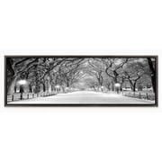 Red Barrel Studio 'Central Park Winter' Framed Photographic Print on Wrapped Canvas