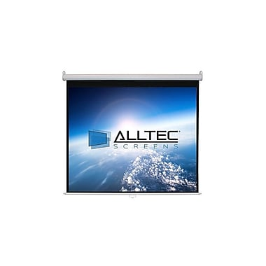 ACSS Matte White Manual Projection Screen; 60'' H x 60'' W