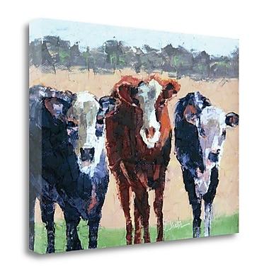 August Grove 'Three Jerseys' Print on Canvas; 28''H x 37'' W