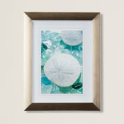 Highland Dunes 'Sea Glass and Sand Dollar' Framed Photographic Print