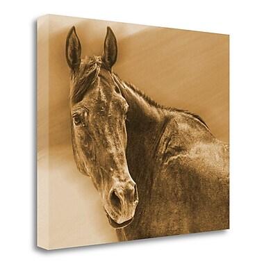 Loon Peak 'AA Amorado' Graphic Art Print on Wrapped Canvas; 35'' H x 41'' W