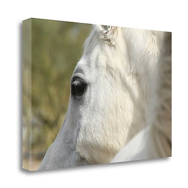 Loon Peak 'A Soft Eye' Photographic Print on Wrapped Canvas; 27'' H x 40'' W