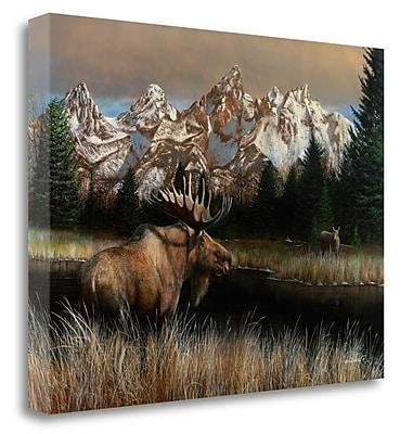 Loon Peak 'Tet' Print on Wrapped Canvas; 25'' H x 34'' W