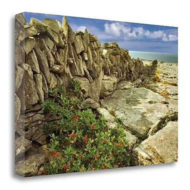 Highland Dunes 'Through the Cracks' Photographic Print on Wrapped Canvas; 20'' H x 29'' W