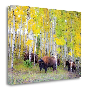 Alcott Hill 'Autumn Buffs' by Gary Crandall Framed Acrylic Painting Print on Wrapped Canvas